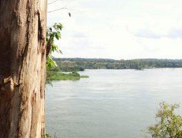 The Nile, Uganda