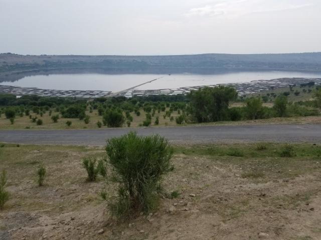 Salt mine, brine, Uganda, Red Chili, Queen Elizabeth National Park, salt lake, volcanic crater