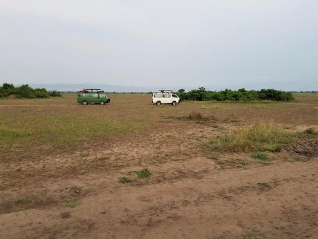 safari, Uganda, Red Chili, Queen Elizabeth National Park, safari vehicle