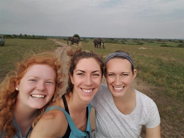 safari, Uganda, Red Chili, Queen Elizabeth National Park, elephant