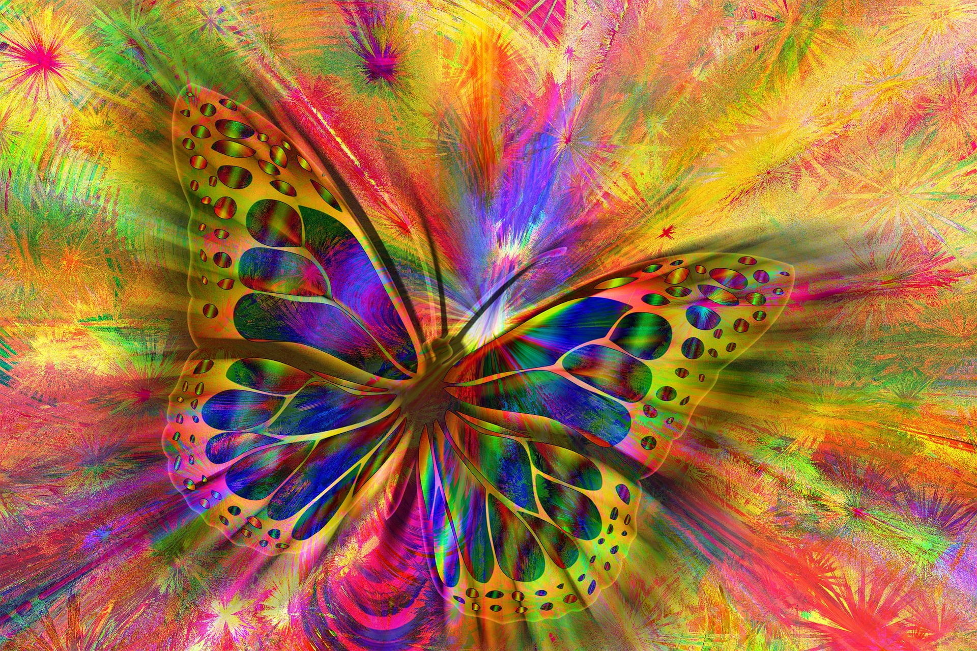 Butterfly, yoga, soul on fire, sofx, heart, mind, strength, tfw, training for warriors
